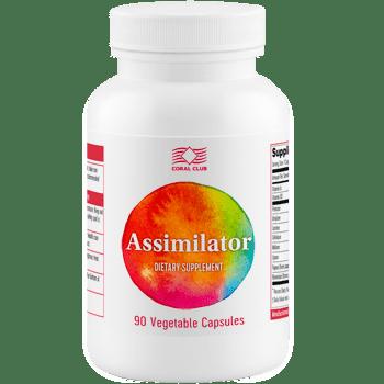 Assimilator Assimilator enzymy trawienne c