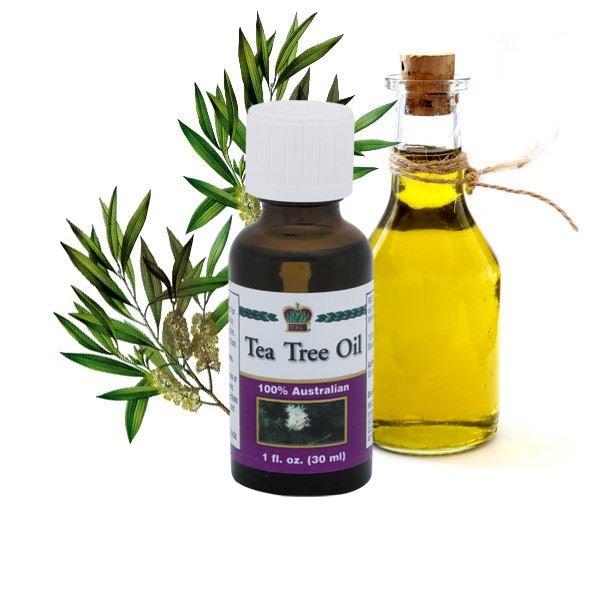Tea Tree Oil tea tree oil