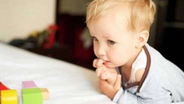 Nasz Blog Jak skutecznie ochronić dziecko przed pasożytami 370x209